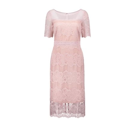 741223d1205 Vera Mont Fitted Lace Dress Rose - Click to view a larger image